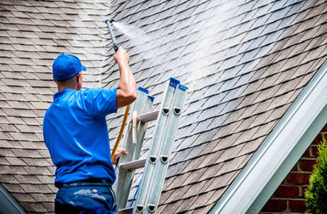 daly city roof cleaning
